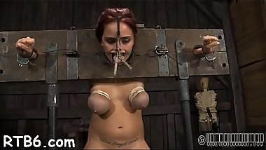Gagged hotty with clamped nipples gets wild fun